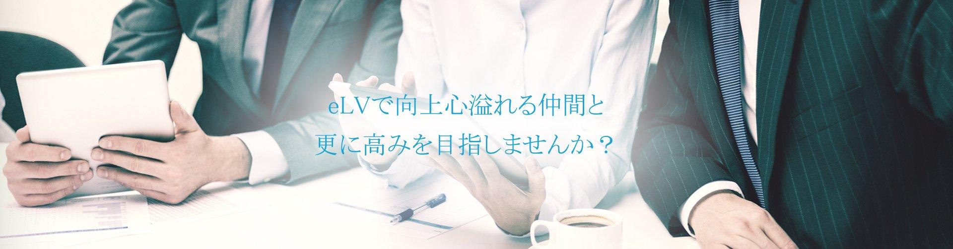 elv_top.jpg