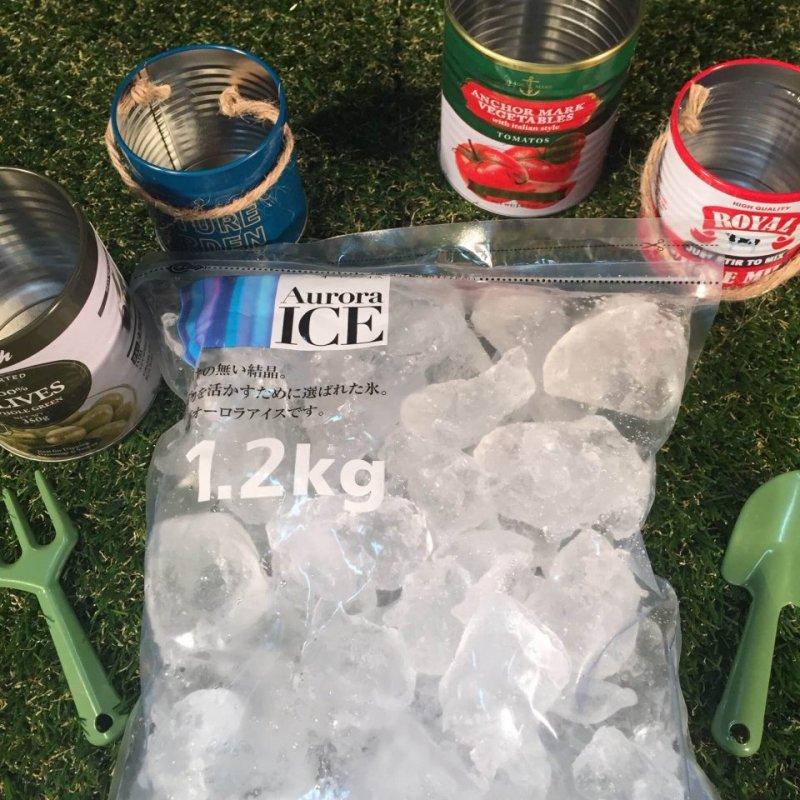 ビールサーバー追加板氷:600円